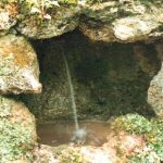 Blütenessenz QUELLWASSER (Rock Water)
