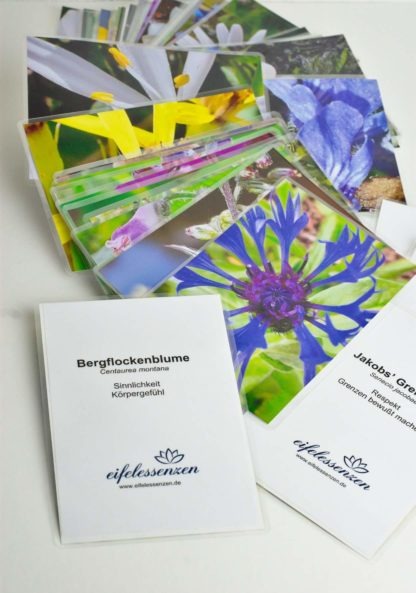 Blütenkarten-Set 48 Basisessenzen